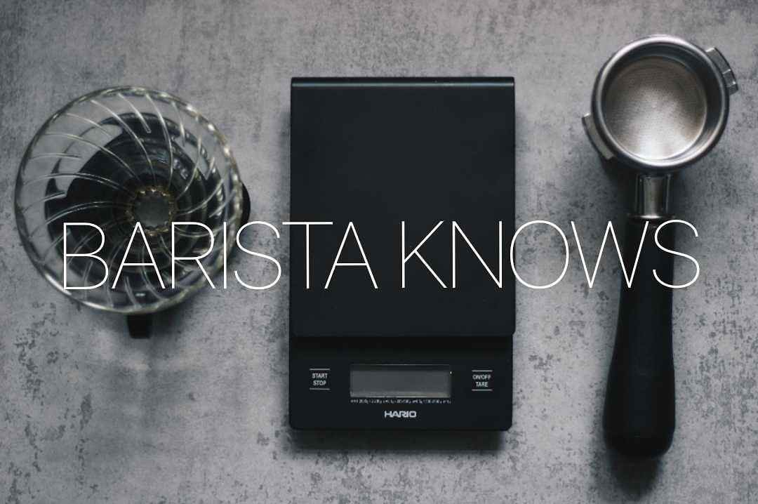barista knows кофейня why knot